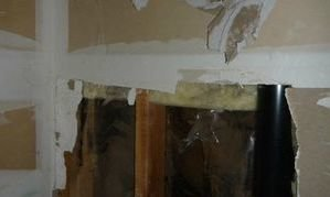 Mold Infested Drywall